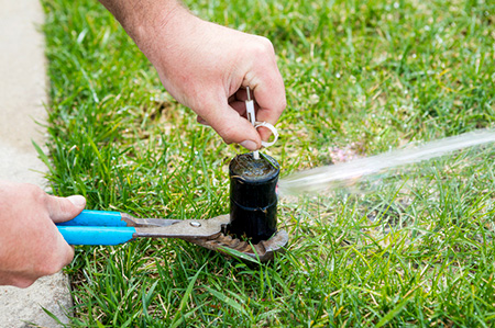 Sprinkler System Repairs and Maintenance