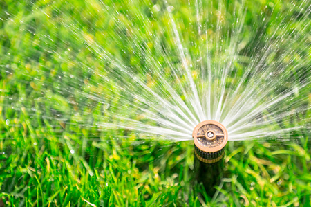 Steps to Take for Reducing Water Consumption Rates and Costs